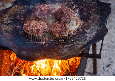 Burger Grilling on Fire. Homemade Hamburgers. Grill Meatballs. Making Hamburgers on a Grill Outdoor. Barbecue Grill Party. Meat Over Coals on Barbecue.Summer grilling.