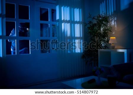 Burglar breaks into house through back door