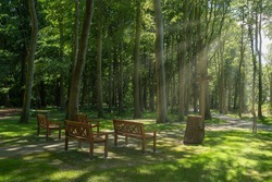 Burial forest Waldfrieden in the castle park of Lütetsburg Castle. Lütetsburg is located in North Frisia on the German North Sea coast.