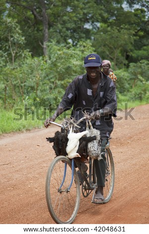 BURKINA FASO - AUGUST 11: African man cycling, bird animal transport cycling is common in rural areas, August 11, 2009 in Tiebele, Burkina Faso