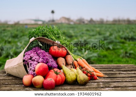 burlap bag filled with vegetables and fruits in a crop field, healthy eating and organic agriculture concept, copy space for text Foto stock ©