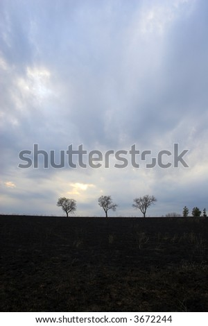 Burned landscape after prairie fire. - stock photo