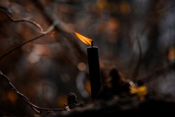 Burning black candle in the spring forest