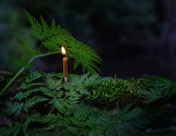burning candle in dark forest, green grass background. magic candle, witch ritual, mysterious fairy scene. copy space