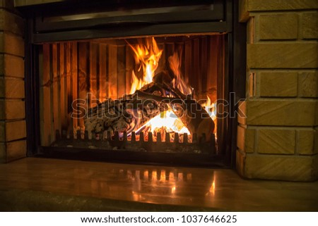 Burning fireplace. Fireplace as a piece of furniture #1037646625