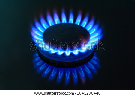 Burning gas, gas stove burner, hob in the kitchen.