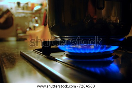 Burning gas of a kitchen stove - stock photo