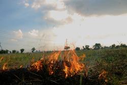 Burning grass and smoke.
