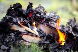 Burning of forbidden books in a totalitarian state