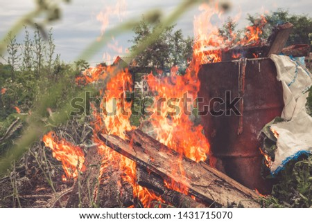 Burning old dry grass in the garden. Destruction of green space. Danger to the ozone layer. Environmental disaster. Ecology, destruction #1431715070