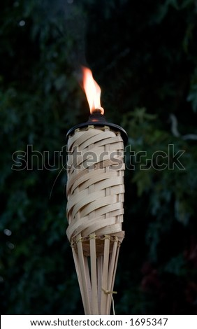 Burning Tiki Torch with blurred maple tree background