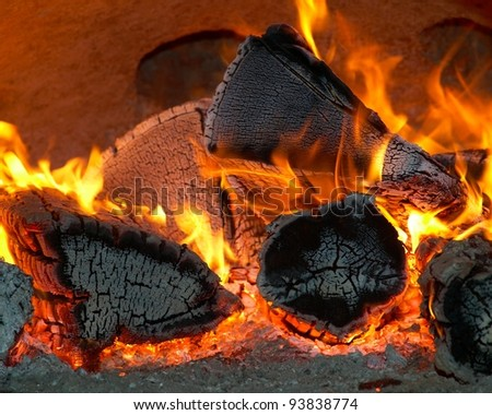 Burning wood and coal in fireplace