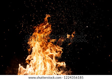 Burning woods with firesparks, flame and smoke. Strange weird odd elemental fiery figures on black background. Coal and ash. Abstract shapes at night. Bonfire outdoor on nature. Strenght of element #1224356185