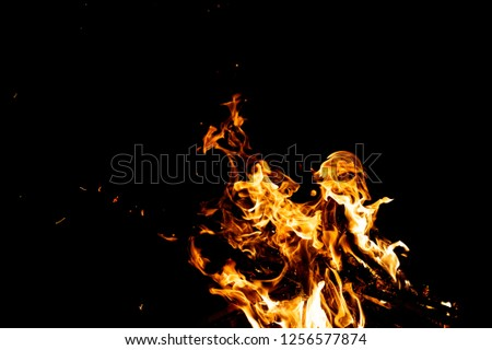 Burning woods with firesparks, flame and smoke. Strange weird odd elemental fiery figures on black background. Coal and ash. Abstract shapes at night. Bonfire outdoor on nature. Strenght of element #1256577874