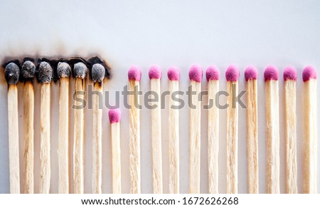 Burnt matches and whole matches on white background. The spread of fire. One whole match isolated to stop the fire. Stop destruction concept