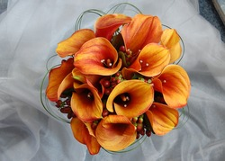burnt orange calla lily wedding bouquet