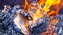 Burnt pages of a book on the fire. Burning books