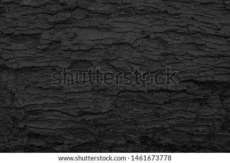 Burnt wooden texture background. Rough black wood surface caused by burning fire. Dark material made from coal or charcoal. Сток-фото ©