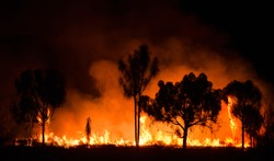 Bush fire In australian outback
