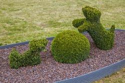 Bush sculpture in park - Durbuy Belgium - nature background