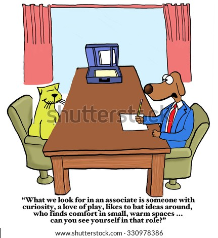 Business cartoon showing business dog interviewing cat, \'What we look for... curiosity,... play,...  Can you see yourself in that role?\'.