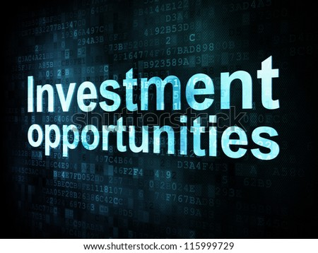 Business concept: pixelated words Investment opportunities on digital screen, 3d render