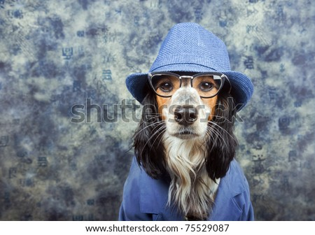 Business/detective/mob/dog in a suit with hat