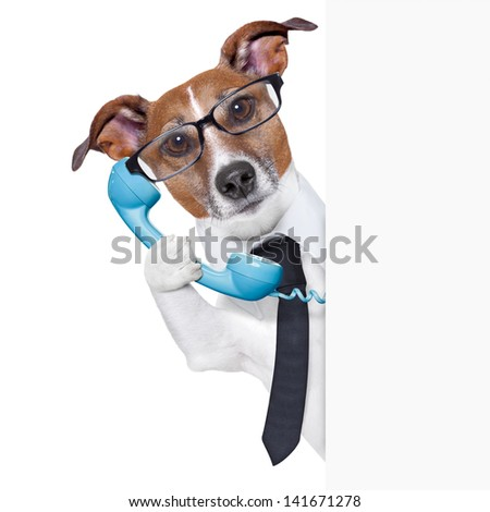 business dog on the phone behind a blank placard