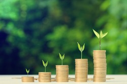 Business Finance and Money concept, Money coin stack growing graph with green bokeh background,investment concept
