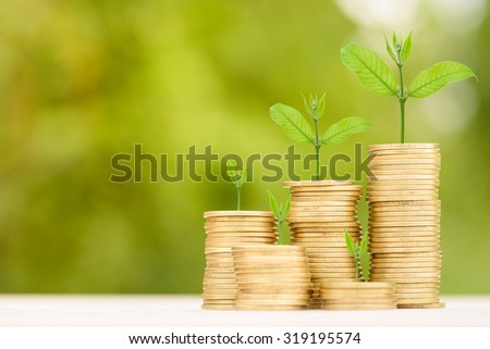Business Finance and Money concept, Money Gold coin stack growing graph with green bokeh background;Trees growing on gold coin