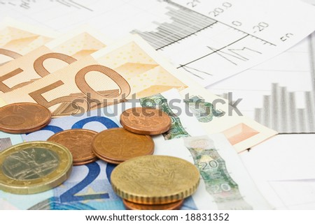 Business financial concept with diagrams and euro money