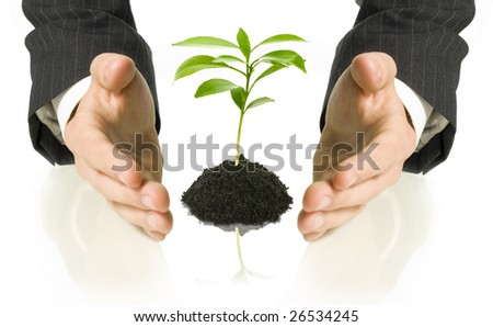 business man covering a little plant between his hands