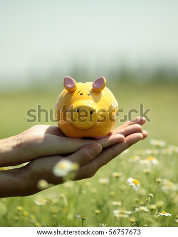 Business savings. Piggy Bank in hand with meadow in background