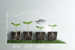 Business slump and recovery stages line graph, with seedlings and roots exposed