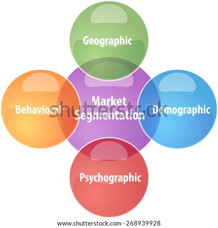 business strategy concept infographic diagram illustration of market segmentation