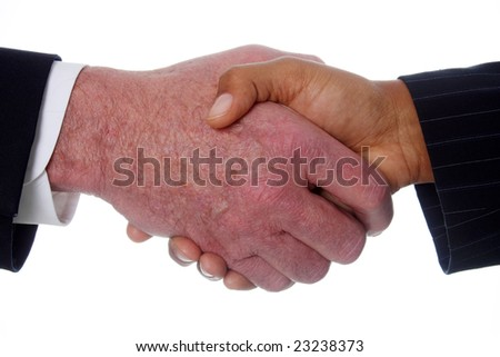 Business team shaking hands in their office