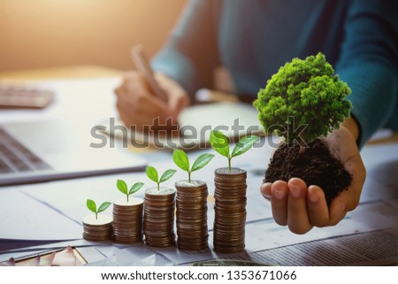 business woman hand holding tree with plant growing on coins. concept saving money and earth day