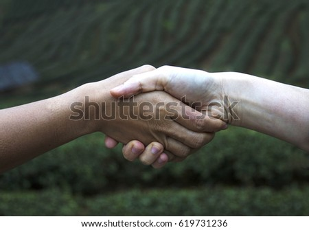Business women handshake with natural background #619731236