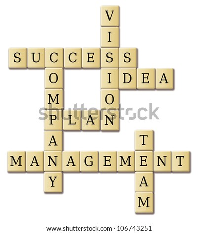 business words - success; plan; idea; company; vision; management; team