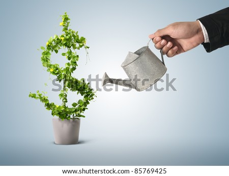 Shutterstock Businessman and watering pot  (path in side)