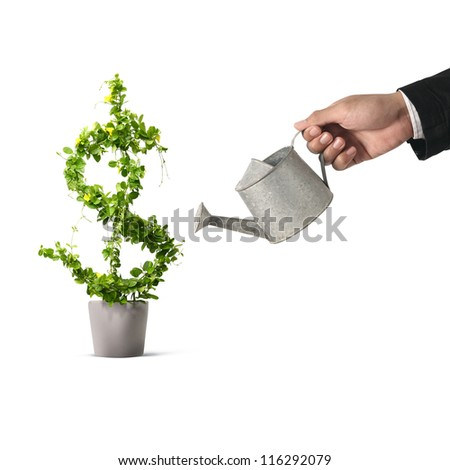 Businessman and watering pot  (path in side) isolated