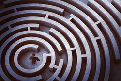 Businessman at the center of a maze