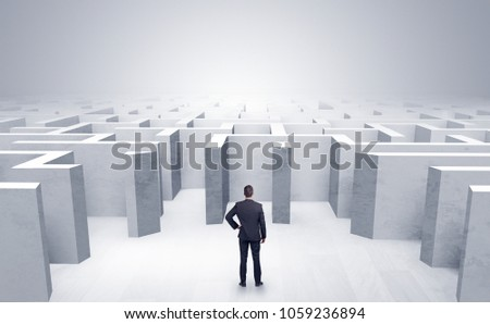 Businessman choosing between entrances in a middle of a maze - Shutterstock ID 1059236894
