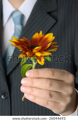 Businessman holding a single flower.
