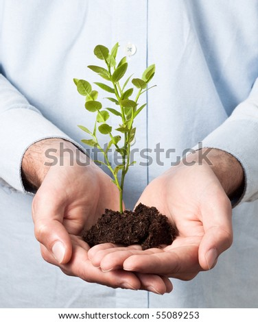 Businessman in blue shirt holding soil and a small plant (growth and development concept)