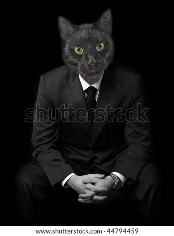 Businessman in gray suit and black cats face instead of human. Black background.