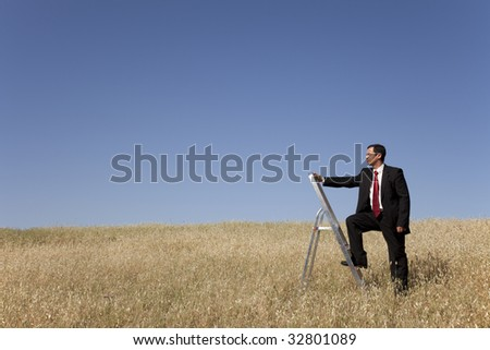 businessman in the field climbing a step ladder