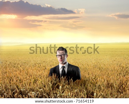 Businessman in the middle of a wheat field