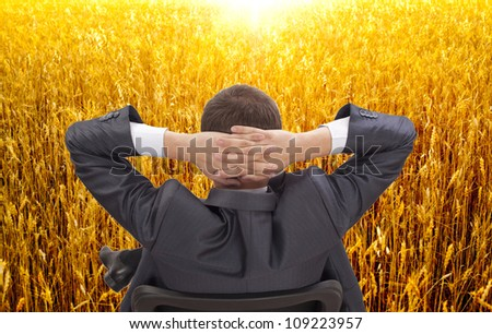 businessman sitting in a chair with his back was cast for the head in his hands in the sunset wheat field