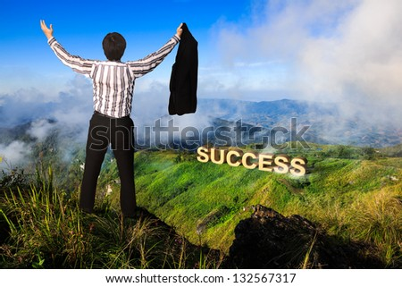 Businessman standing on a peak at mountain Success in business concept